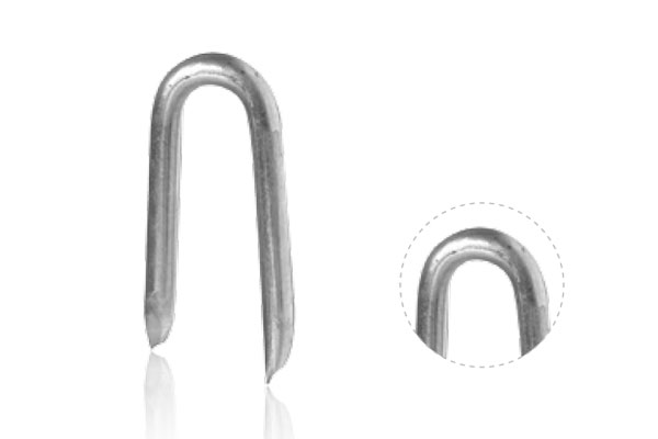 Galvanized Staples Nail